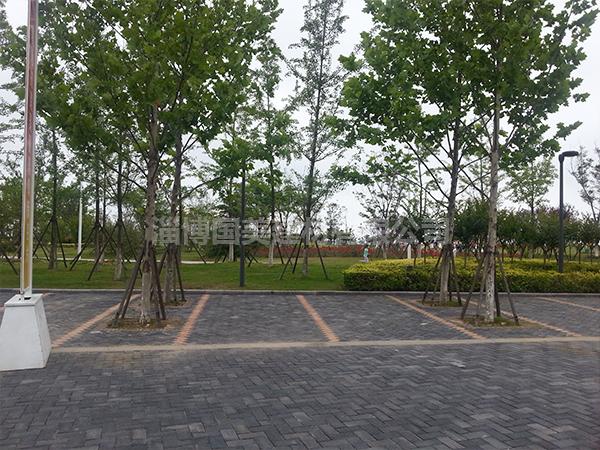 陶瓷透水砖停车场所案例